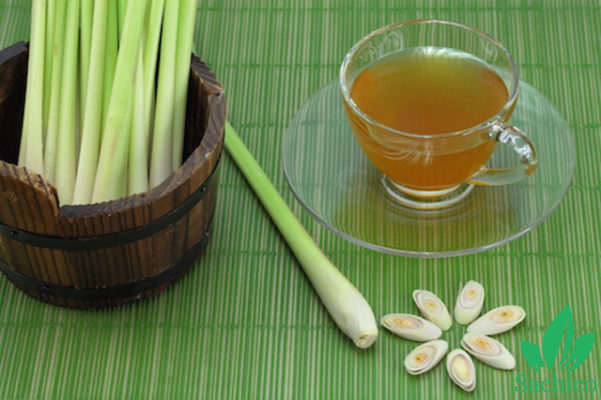 Cách làm tinh dầu sả đơn giản tại nhà