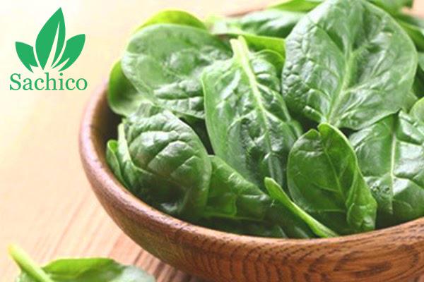 ăn rau mồng tơi có tác dụng gì