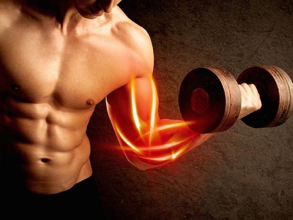 Ăn hạt điều phát triển cơ bắp