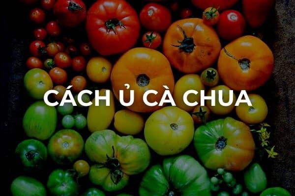 Cách ủ cà chua chín nhanh