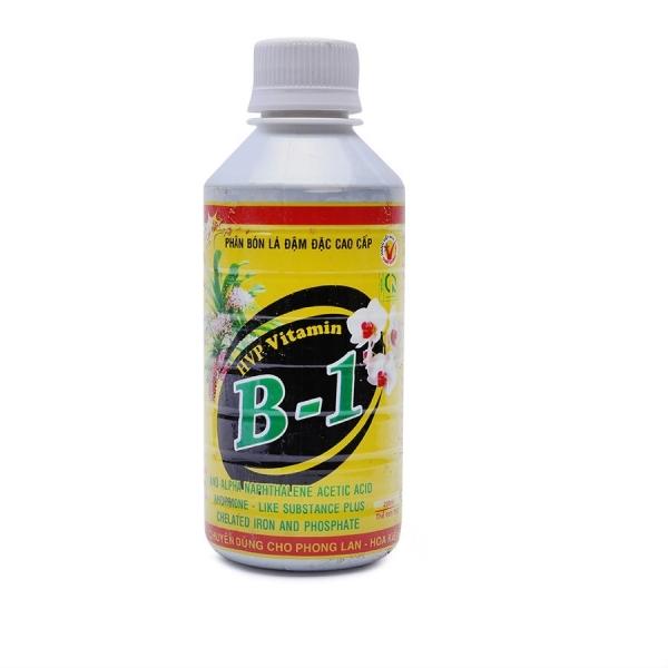 Tác dụng của Vitamin B1 đối với phong lan có thể bạn chưa biết