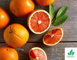 TIẾT LỘ: Những giống cây ăn quả mới năng suất cực cao!