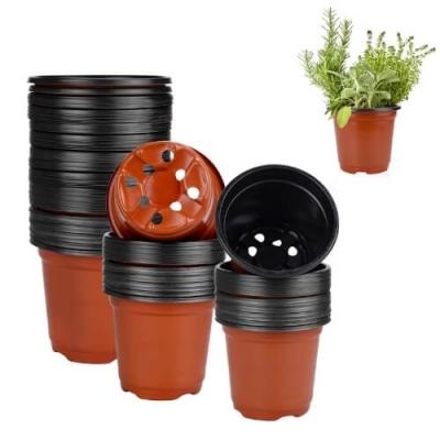 Chậu nhựa trồng cây cảnh
